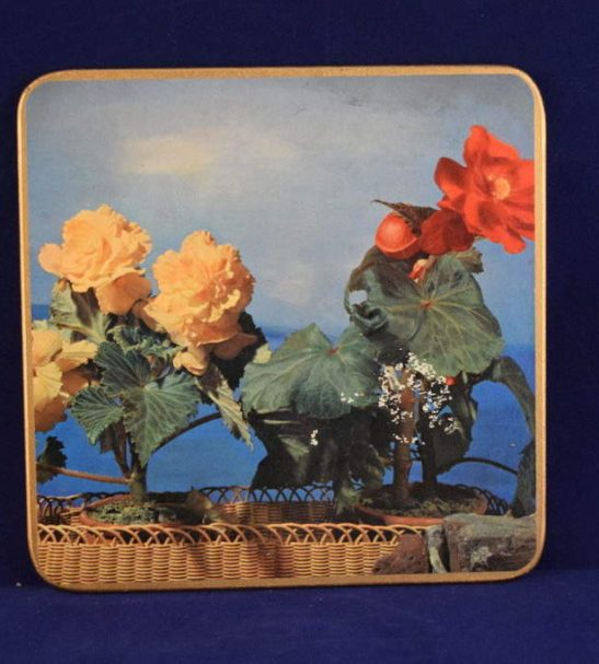 Win El Ware place mats