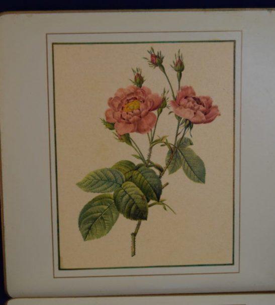 Vintage Flower Place Mats